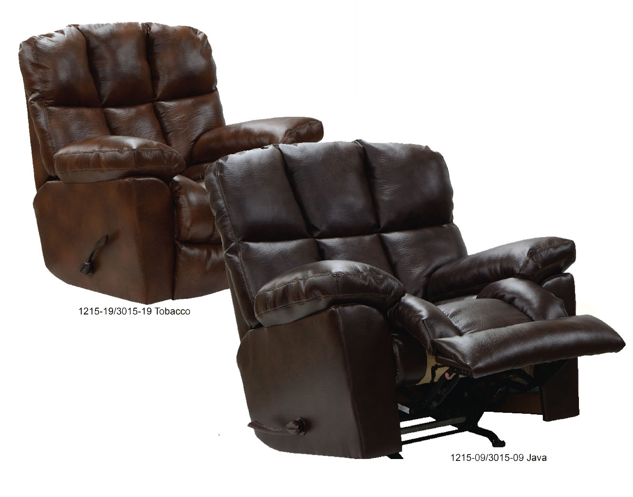Catnapper Lift Chair Easy Comfort Chairs 2 Photo